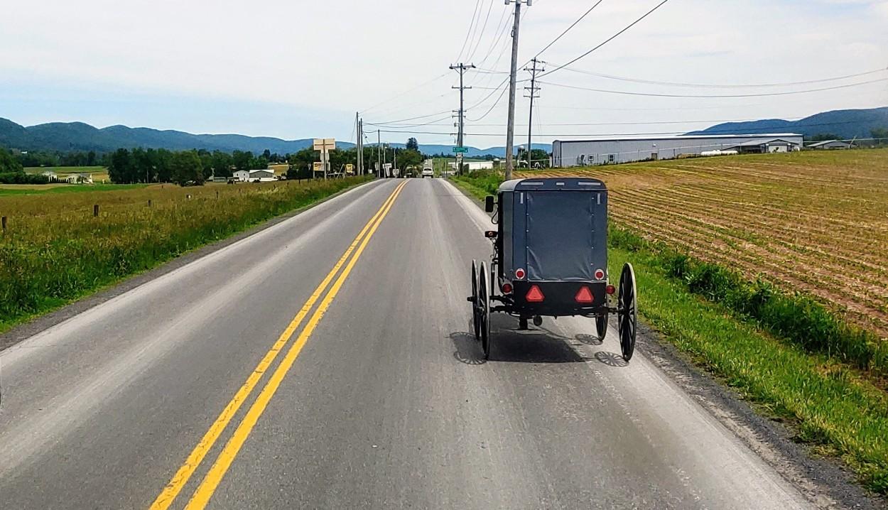 AmishBuggy01
