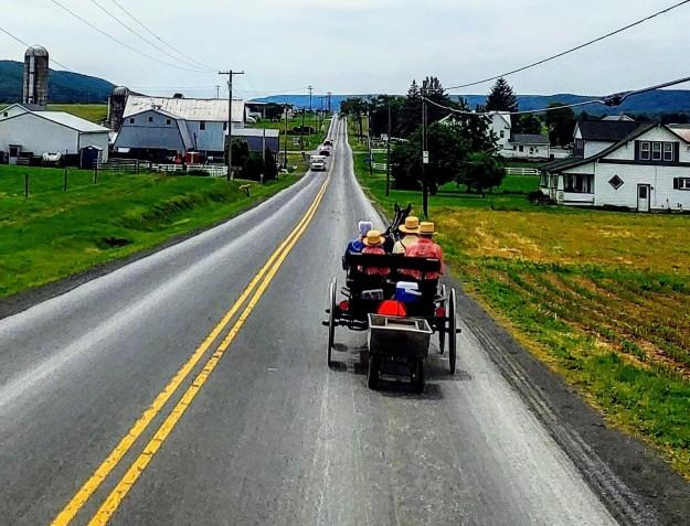 AmishBuggy02
